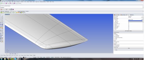 Wingtip1